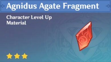 Photo of Comment obtenir un fragment d'agate Agnidus dans Genshin Impact