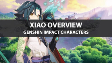 Photo of Genshin Impact Xiao Stats, Talent Upgrade, and Ascension Guide
