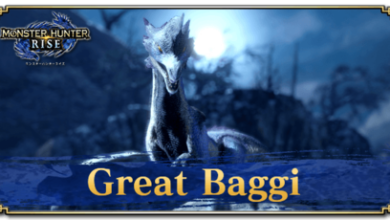 Photo of Great Baggi – statistiques | Monster Hunter Rise | MHR (MHRise)