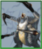 Photo of Death Claw Stats et emplacements | FF8