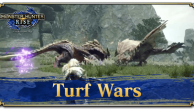 Photo of Turf Wars | Monster Hunter Rise | MHR (MHRise)